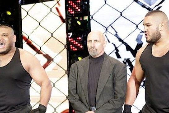 Paul Ellering parle du succès de The Authors of Pain et plus